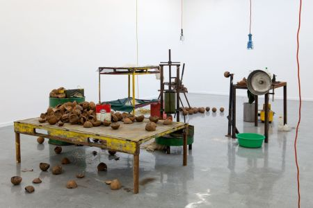 Nicholas Mangan, Progress in Action, installation view, 2013, courtesy of Sutton Gallery