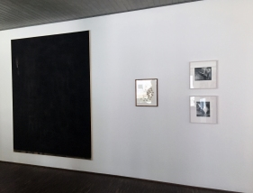 Falling Fictions (2015), Installation View, Courtesy of Amy E. Brown