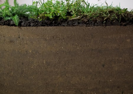 15 Nicole Vinokur, Great Piece of Turf- 10.5kN, 2014, 1000kg compressed soil, topsoil, harvested weeds
