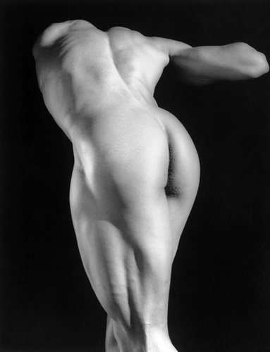 Robert Mapplethorpe, Michael Reed, 1987-1990, Copyright Robert Mapplethorpe Foundation, New York.