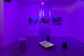 E. Jane, Lavendra/Recovery (Iteration No.1), 2015, Installation, Image courtesy of artist.
