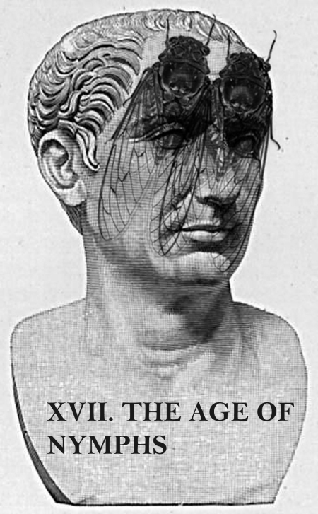xvii-the-age-of-nymphs